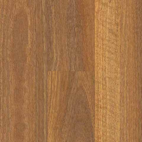 QLDSpotted Gum