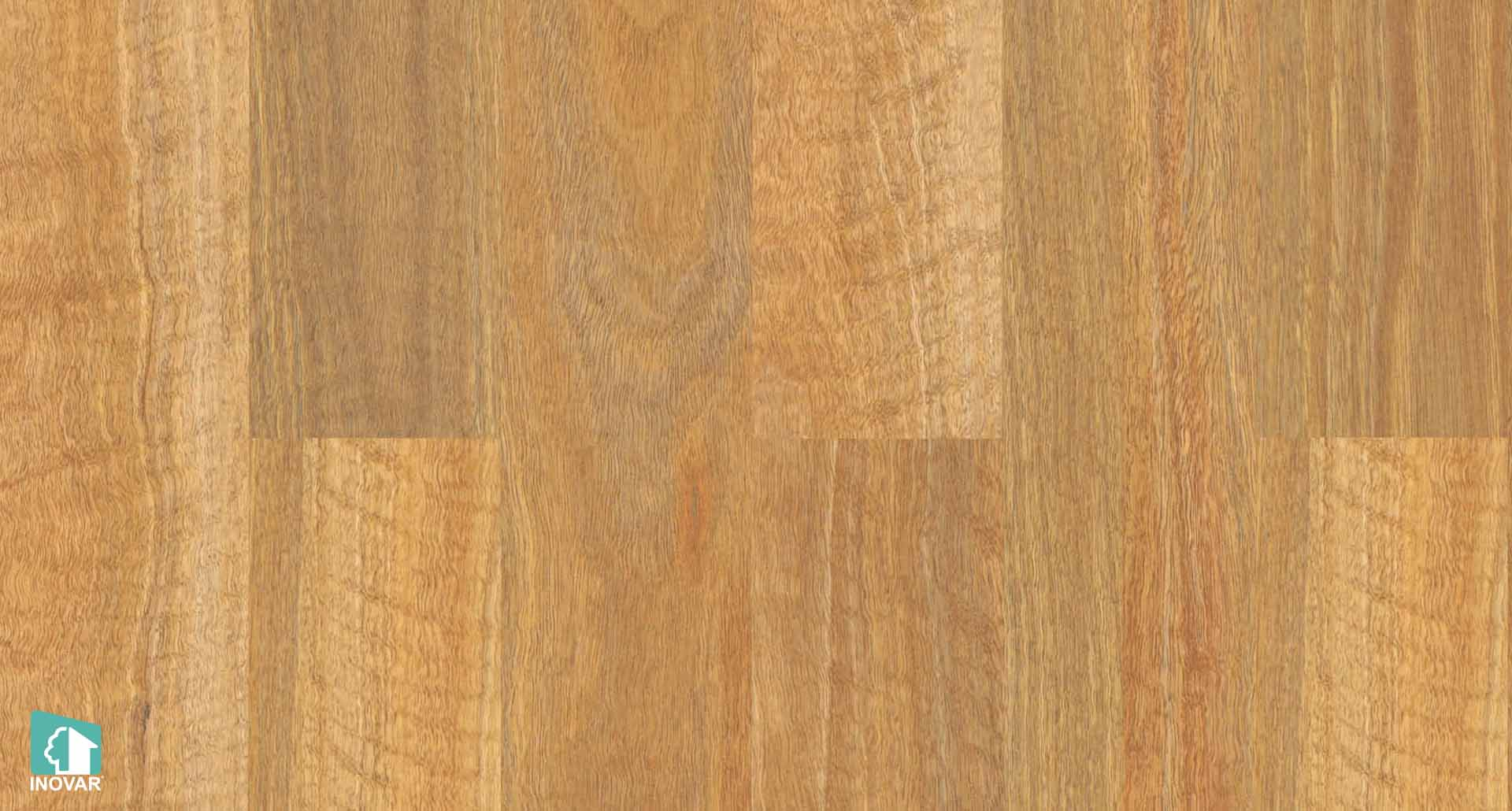 NSWSpotted Gum