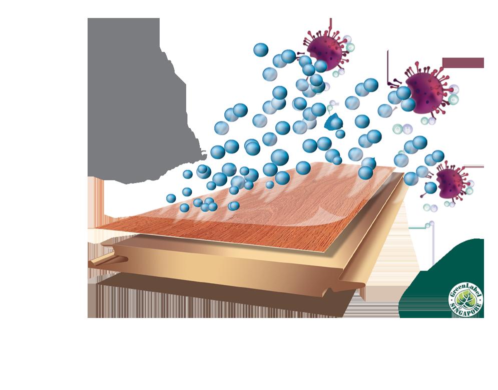 Dòng Nanoshield 12mm
