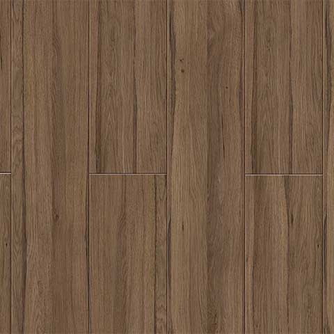 Amazon Oak
