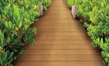 Inovar Floor - Đơn vị phân phối sàn nhựa ngoài trời giá rẻ, chất lượng